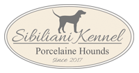 Sibiliani Kennel Porcelaine Hounds